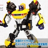 fj yellow bot